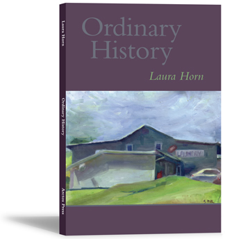 Ordinary History